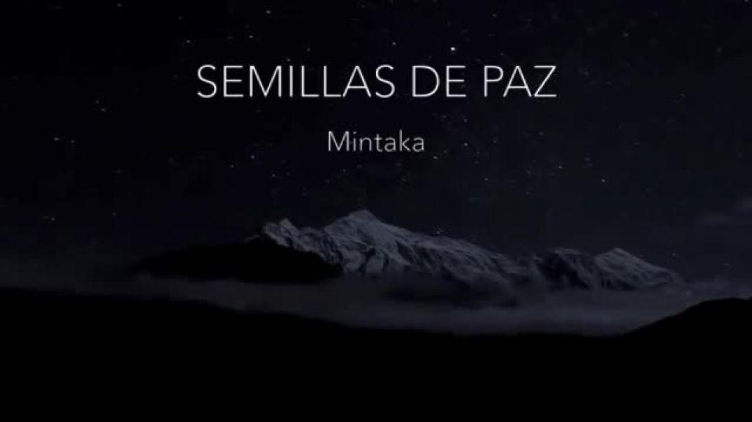Mintaka-Semillas-de-Paz