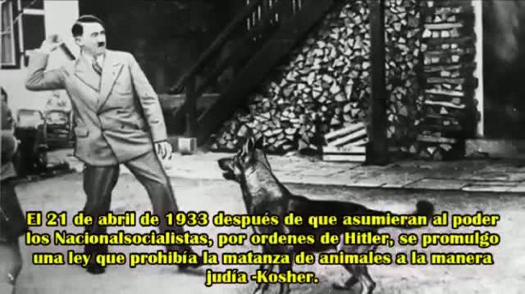 DERECHOS de los ANIMALES en la ALEMANIA NACIONAL SOCIALISTA..mp4
