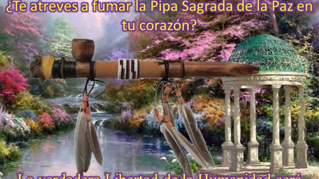 La Pipa Sagrada de la Paz.wmv