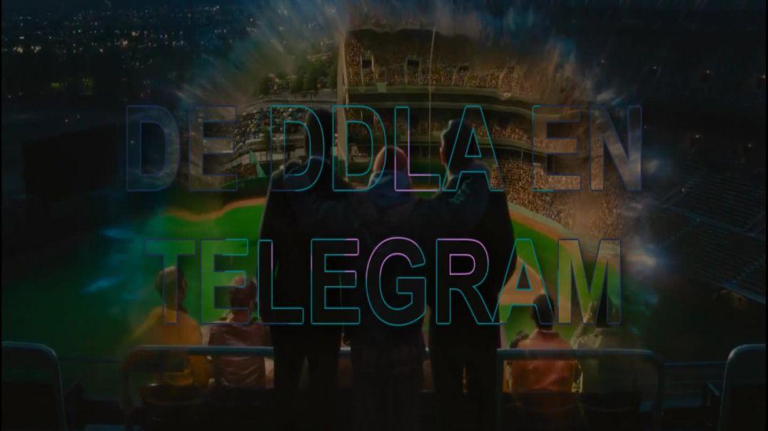 Promo DDLA Telegram