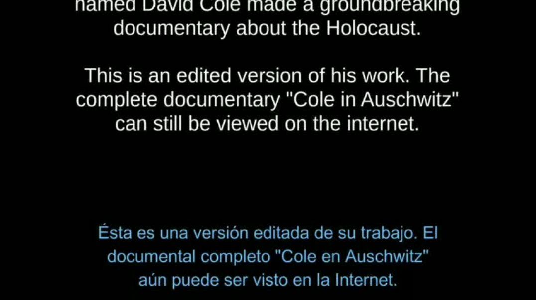 Extracto infome Cole y Leucher.  Holocuento