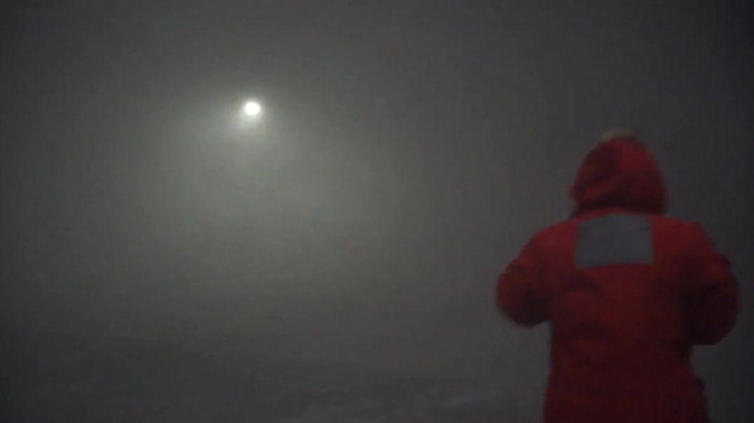 Insitu Antártida