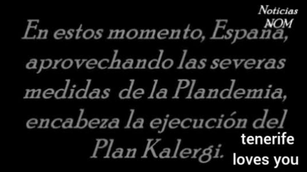El plan Kalergi, permitido en España por el gobierno.