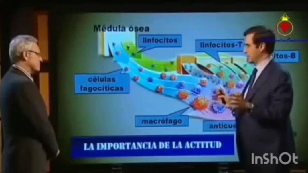 Dr. Mario Alonso Puig. ¿Cuál es tu actitud?