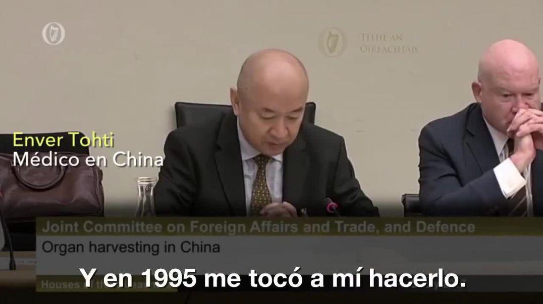 Medico de China, sustracción de organos