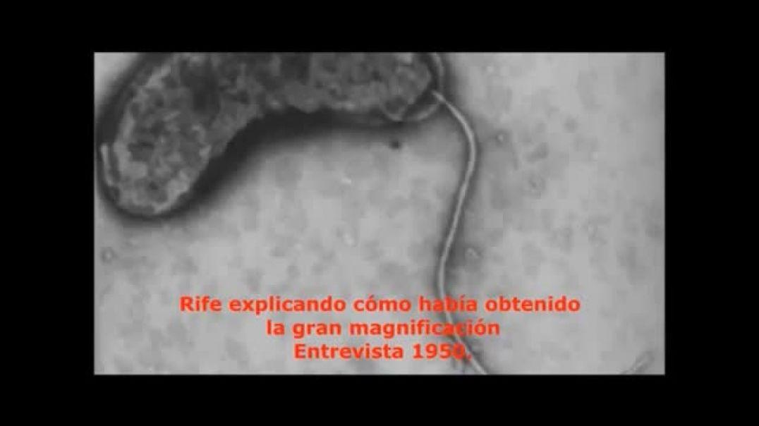 Capítulo 2. Rife a través de su obra - Su primer microscopio
