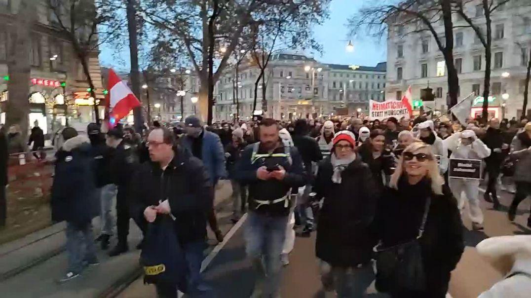 Manifestación en Viena 3 de enero de 2021