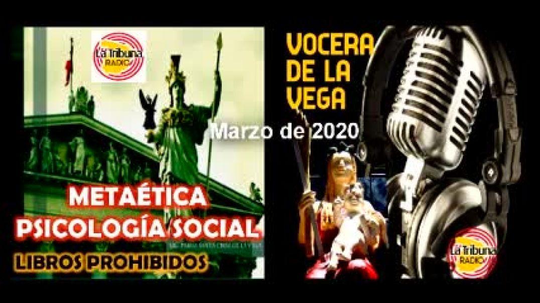 METAÉTICA PSICOLOGÍA SOCIAL - RESEÑA DEL LIBRO.
