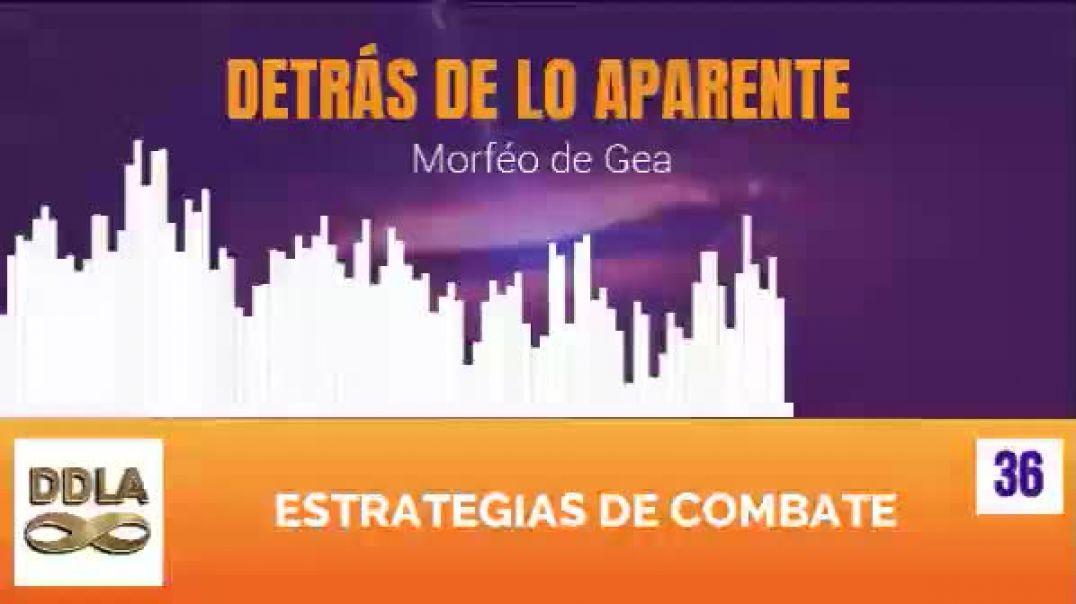 DDLA 036. ESTRATEGIAS DE COMBATE.