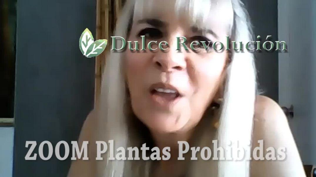 SALUD NATURAL: Plantas prohibidas que salvan vidas