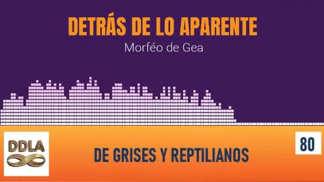 DE GRISES Y REPTILIANOS.
