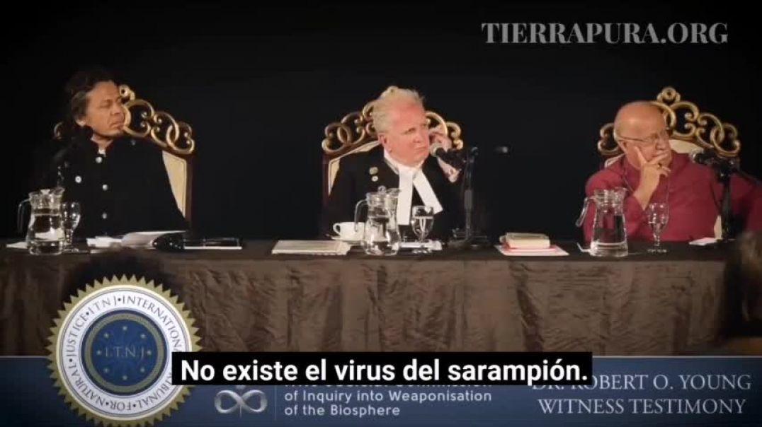 alegato sobre la corrupcion de la ciencia sobre los virus