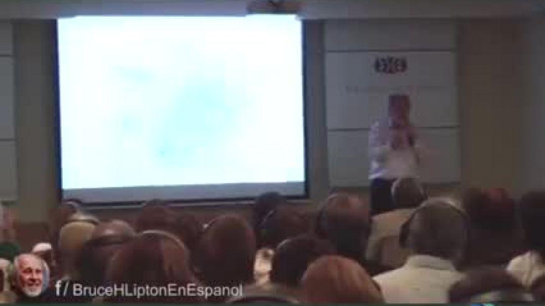 Bruce Lipton en español, el gran secreto de la salud