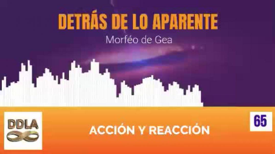 DDLA 065 Acción y Reacción