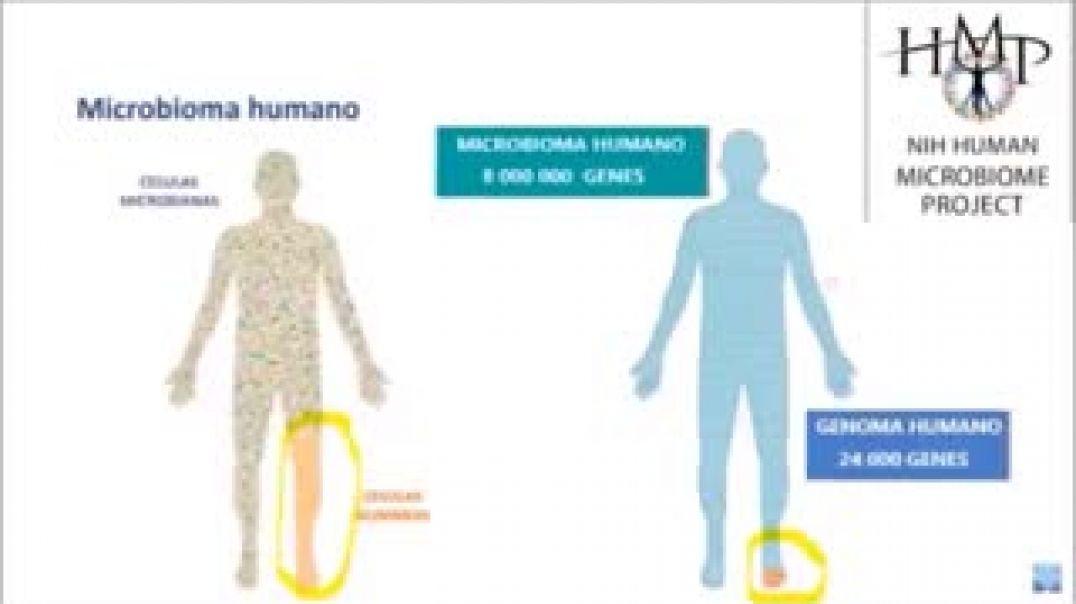 Vida controlada por hongos y parásitos Dra. Pilar Mora Experta en patologías.